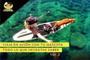 Viajar con mascota: Información imprescindible para preparar tu viaje a Polinesia Francesa