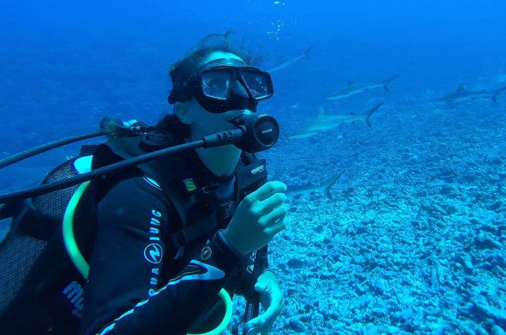 fakarava tiburones