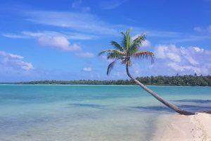 Cuatro cosas imprescindibles que ver en Bora Bora